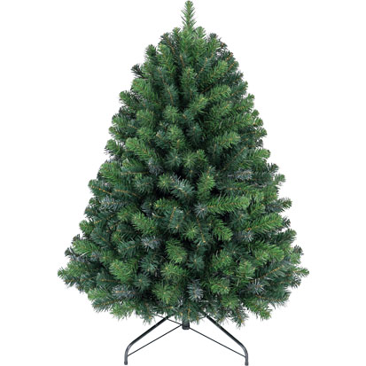 Item 12600 : 4ft Texas Blue Spruce
